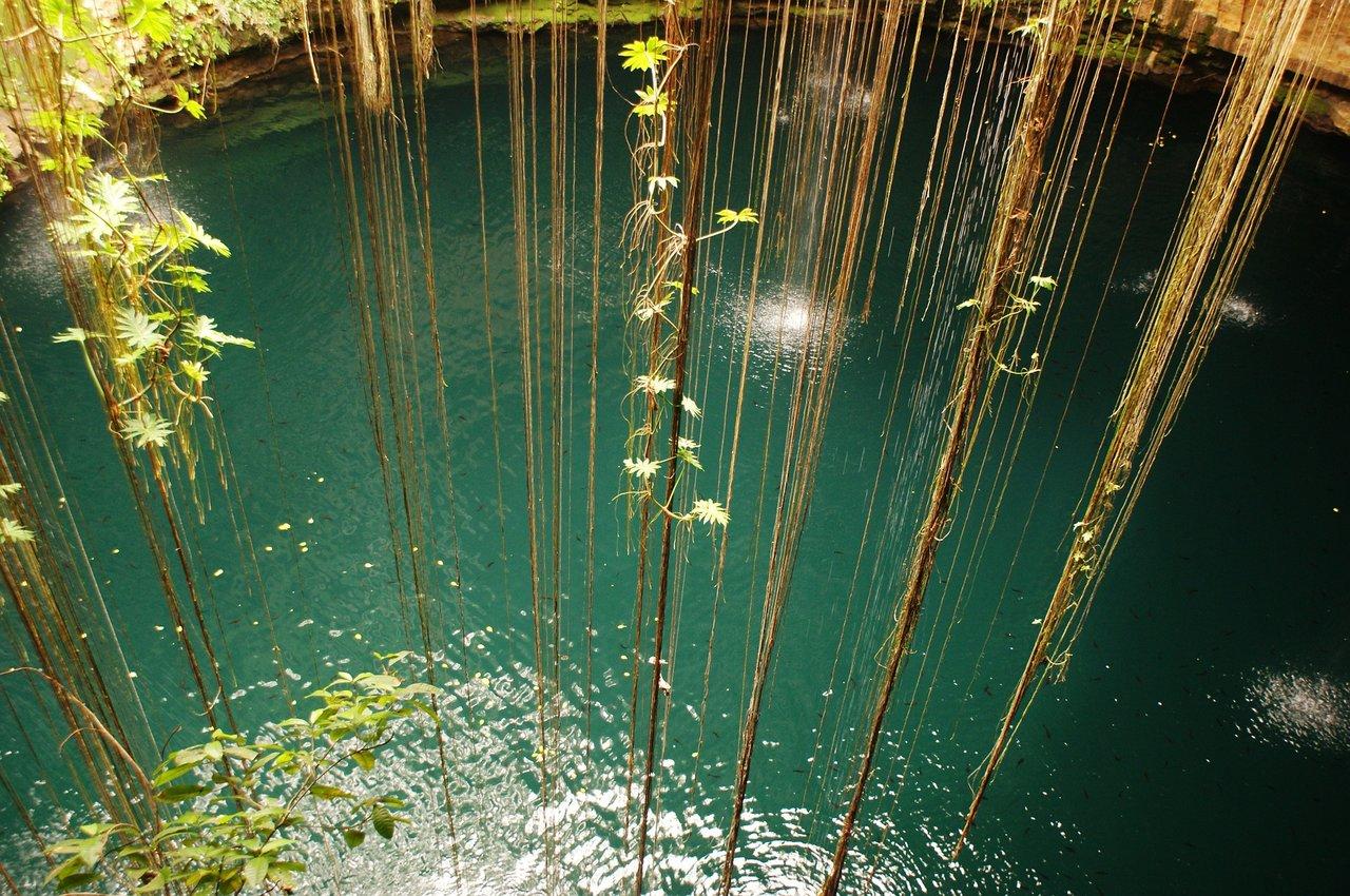 Džungļi Taizemē