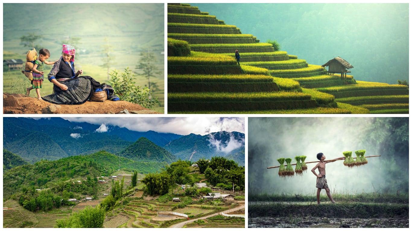 Sapa, vjetnama, vietnam, сапа, вьетнам