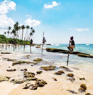 sri lanka, šrilanka, ceļojums uz šrilanku