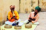 jaipur, džaipura, indija, ceļojums uz indiju
